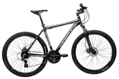 "Велосипед 29-r Fort Carmine 21"""